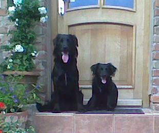 Lissy und Peppi